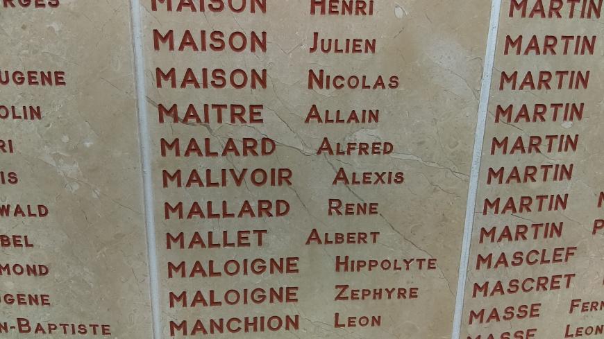 MAM Amiens malard alfred